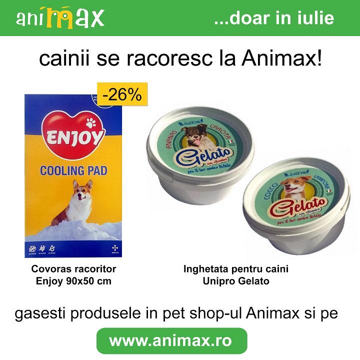 ANIMAX : Si cainele tau trebuie sa se racoreasca!